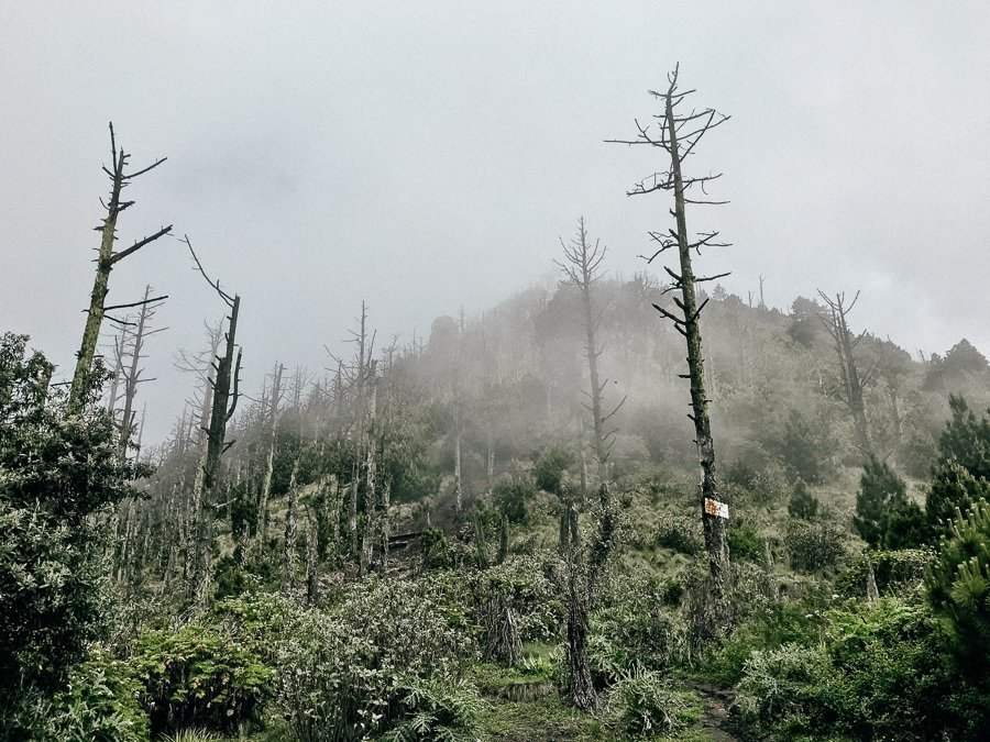 Guatemala Acatenangovulkaan