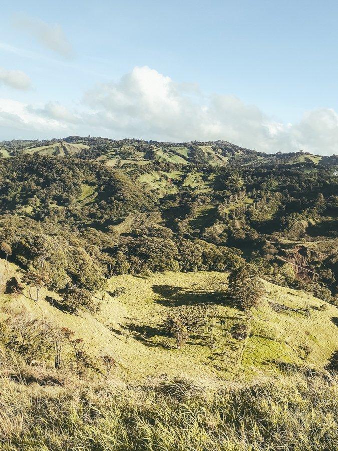 De omgeving van Monteverde