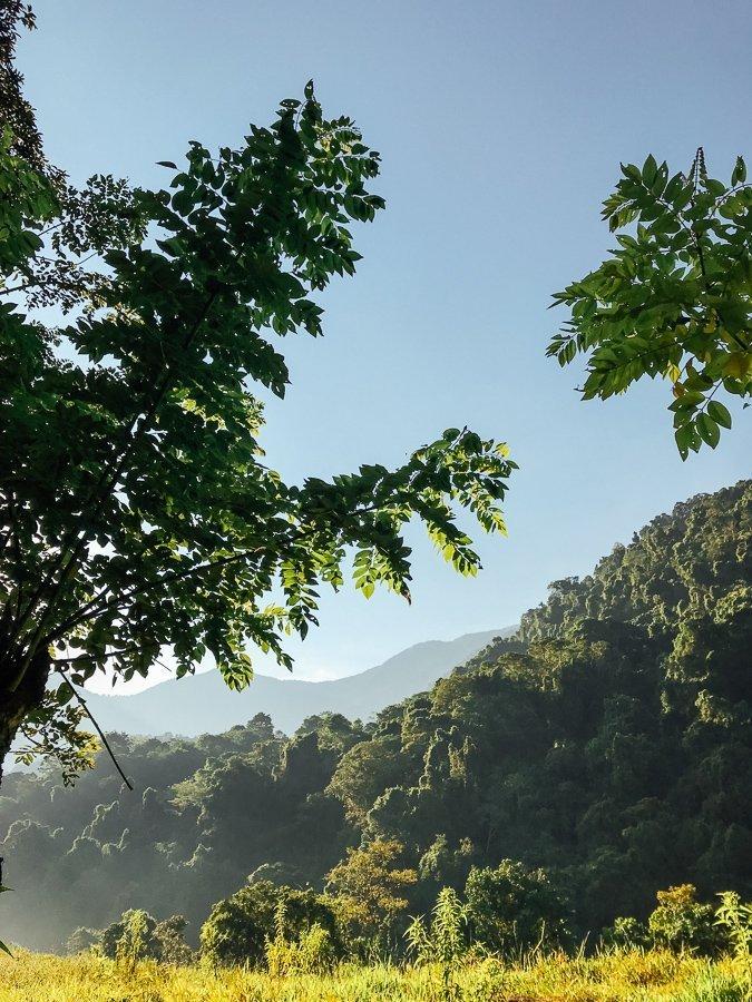 Een prachtig uitzicht tijdens de Ciudad Perdida hike in Colombia
