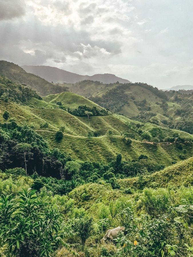 Groene valleien die je tegenkomt tijdens de trek naar de Lost City in Colombia