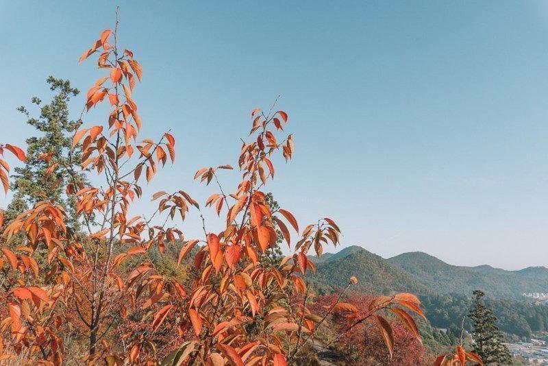 Noord-Japan kent de mooiste natuur.