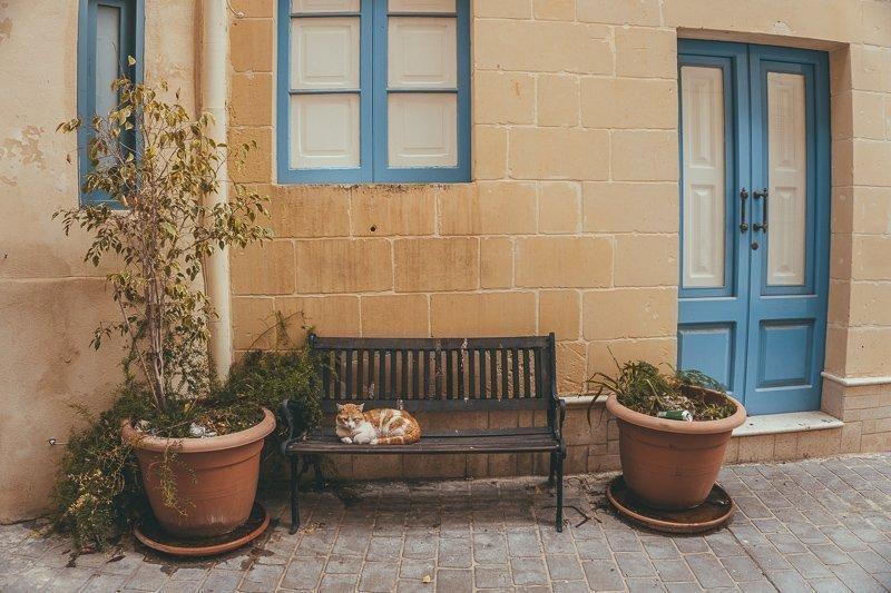 Tijdens een vakantie op Malta moet je zeker in een farmhouse slapen.