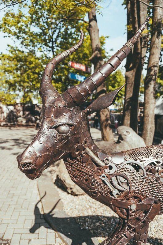Bezoek zeker de Kovo Zoo!