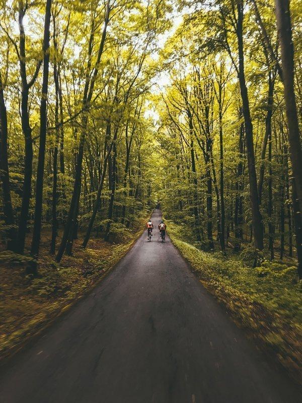 Je fietst door bossen, langs koolzaadvelden en je komt terecht in dorpjes.