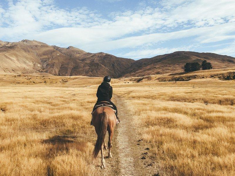 In Wanaka kun je heel goed paardrijden, doe dit ook zeker!