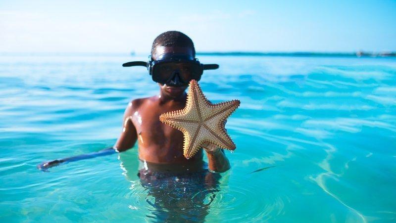 Rondom Caye Caulker kun je heel goed snorkelen.