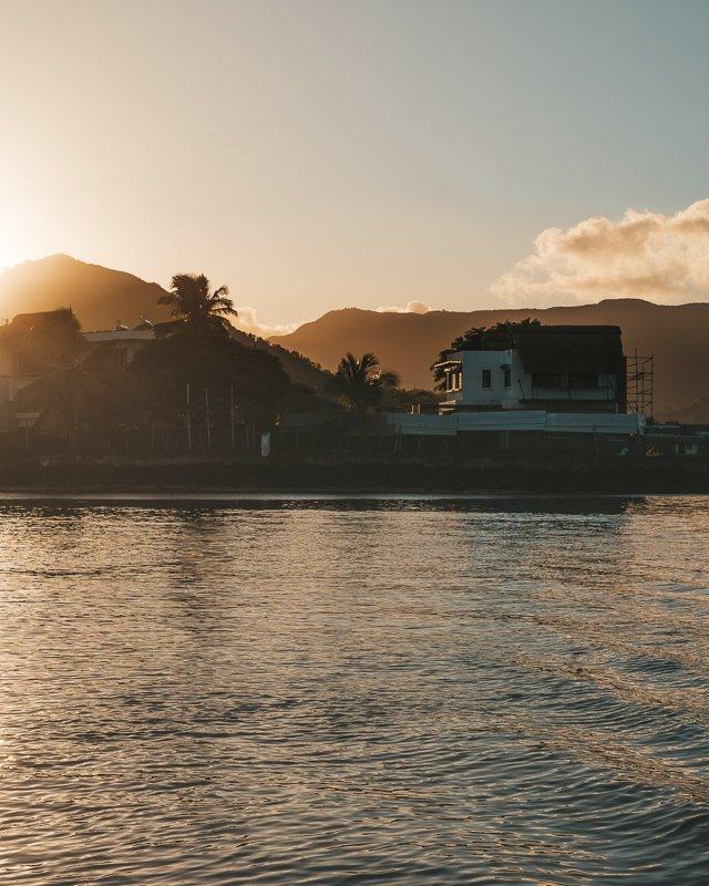 Dolfijnen spotten is een echte Mauritius highlight!