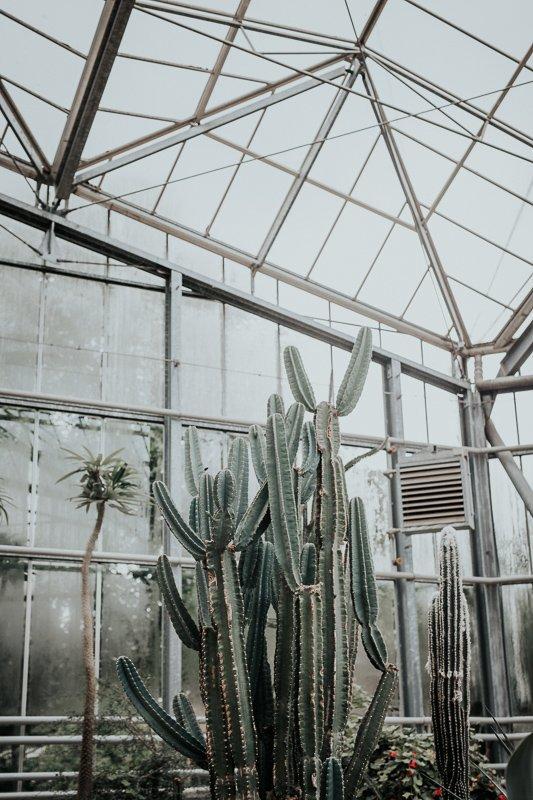 Hortus Botanicus is een van de leukste uitstapjes tijdens een dagje Amsterdam.