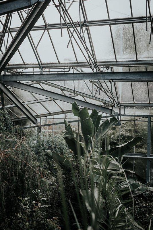 De mooie Hortus Botanicus in Amsterdam.