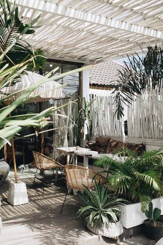 Maak van je tuin een tropisch paradijs.