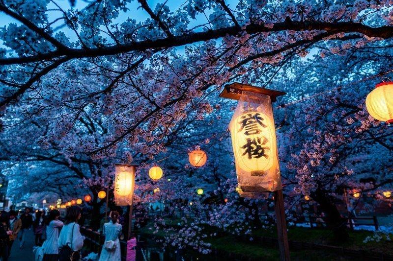 Voor rust in de stad ga je naar het Yoyogi Park.