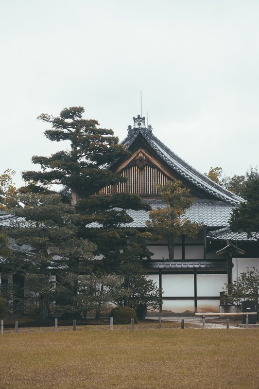 In Kyoto vind je de Kenninji tempel, welke je helemaal van binnen mag bekijken.