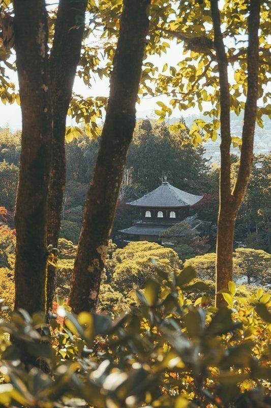 Struin door de tuin van de Tenryu-ji tempel voor mooie uitzichten.