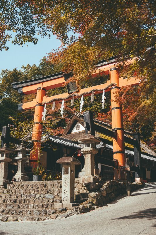 Voor een mooie wandeling ga je naar Arashiyama.