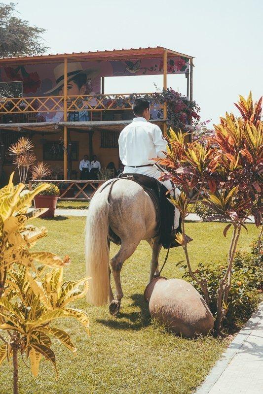 Woon een paardenvoorstelling bij in Casa Sipan.