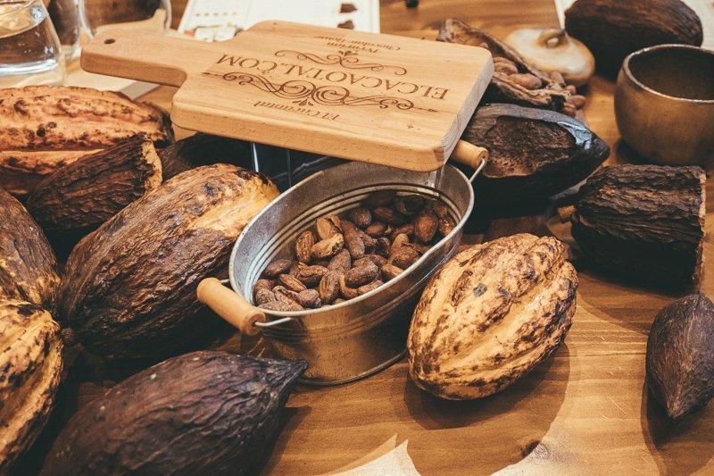 Doe in Barranco een cacao tasting, een van de leukste activiteiten.