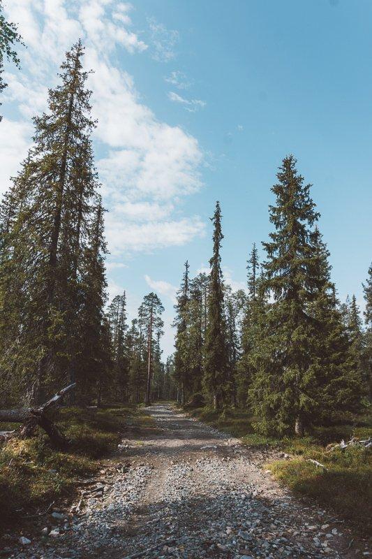 Goedkoop naar Lapland? Check hier alle kosten op een rij!