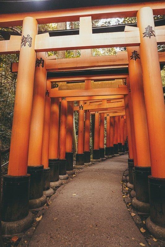 De rode poorten van Kyoto.