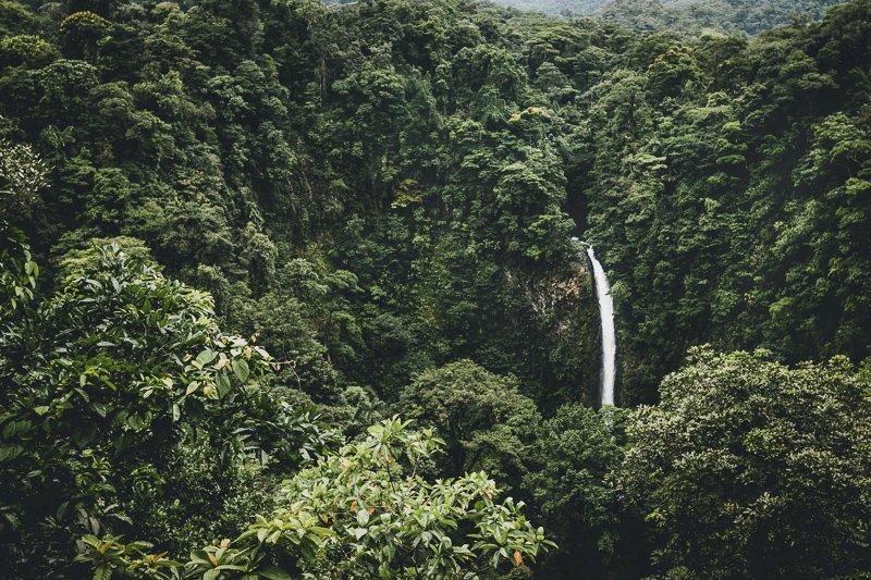 Tijdens het backpacken in Costa Rica kom je de mooiste natuur tegen.