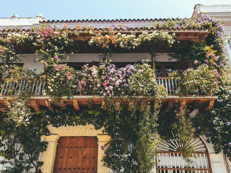 In Cartagena, Colombia kom je veel bloemen en kleur tegen