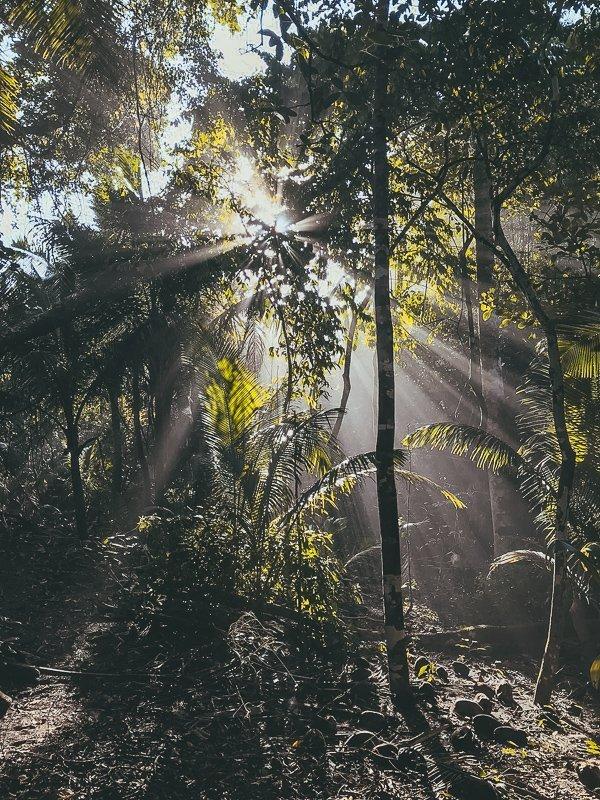 De natuur in Midden-Amerika is geweldig.