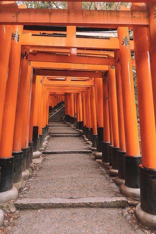 Ga je naar Fushimi Inari-Taisha toe? Vermijd dan het beginpunt en loop zo ver mogelijk door.