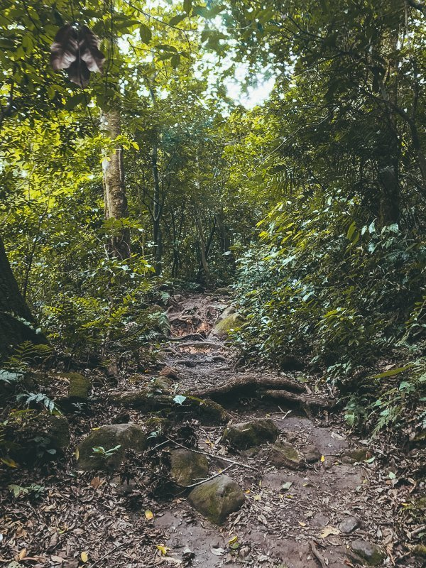 In het noorden van Costa Rica kom je verschillende landschappen tegen.
