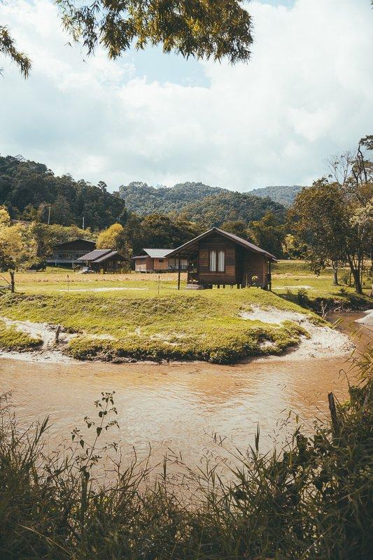 De rijstvelden in Thailand.