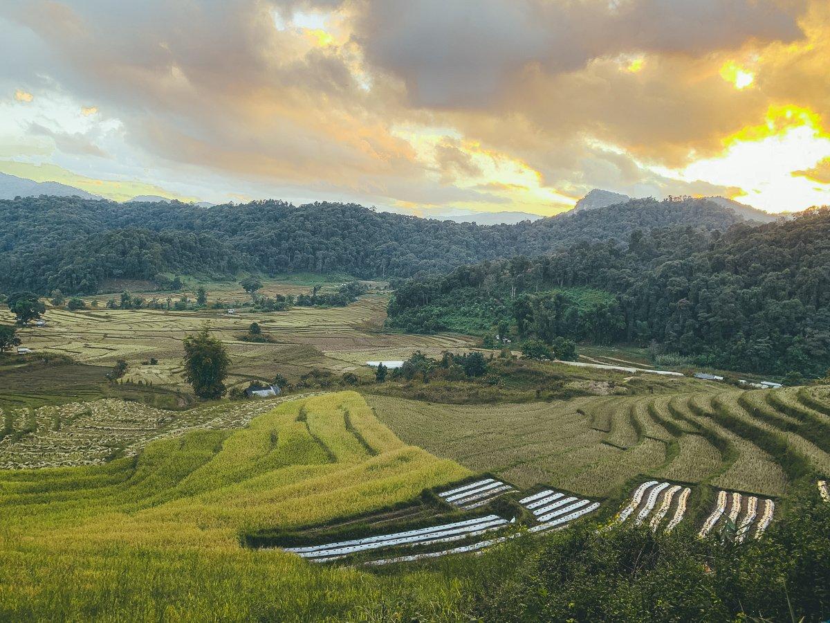 doi inthanon national park thailand