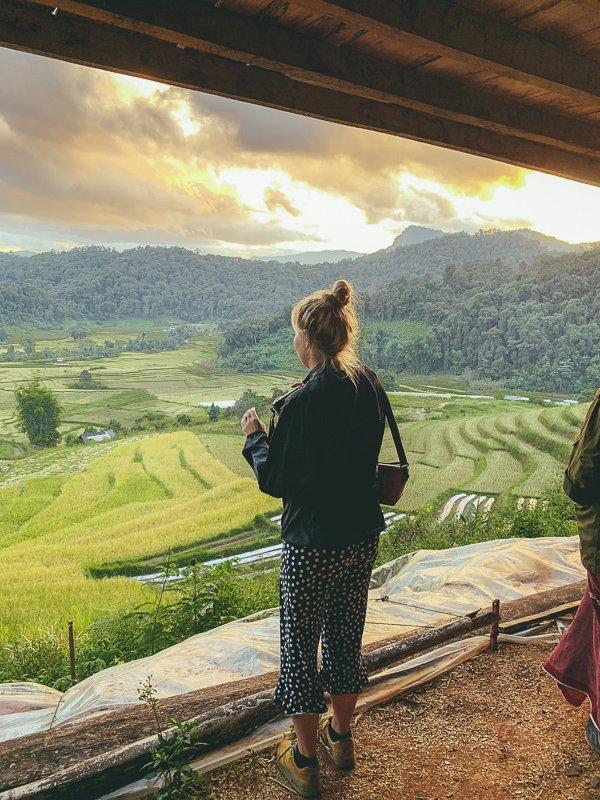 Breng een bezoek aan de rijstvelden van Thailand.