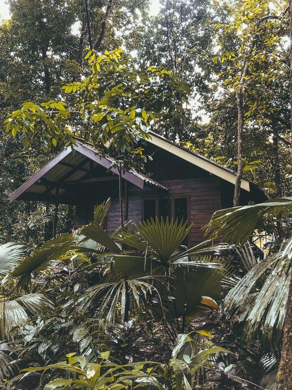 De huisjes van de Khao Sok Riverside Cottages.