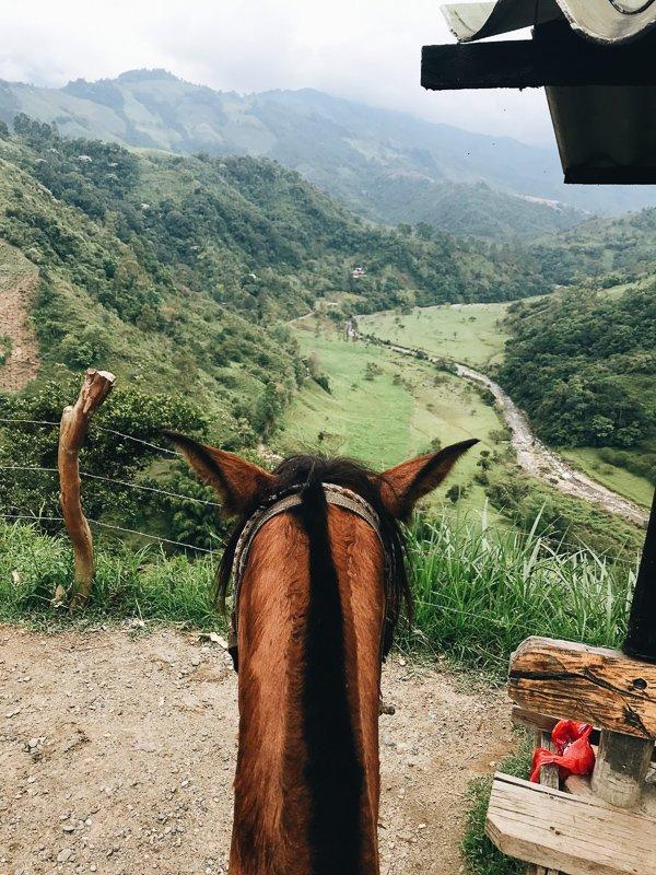 Paardrijden bij de Cocora Vallei