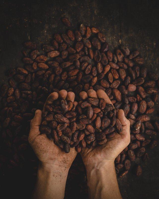 Koffieboerderij in Colombia