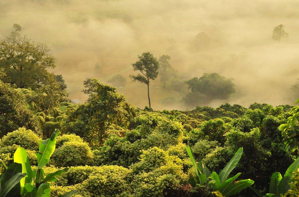 Hier lees je alles over het regenseizoen in Thailand!