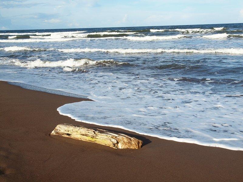 Het strand van Tortuguero.