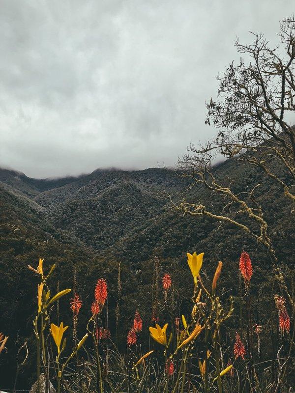 Uitzichten in Colombia