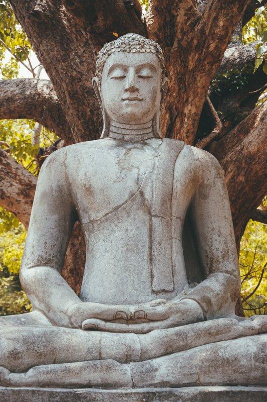 Verken alle beelden en tempels in Anuradhapura