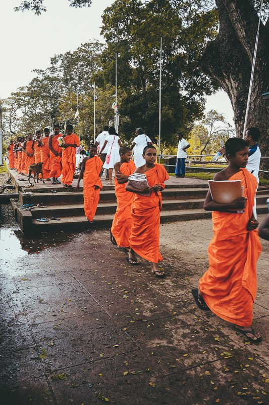 Monniken bij de tempels en stoepa's in Sri Lanka