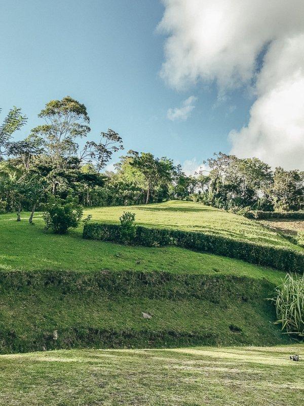 De groene omgeving in het noorden van Costa Rica