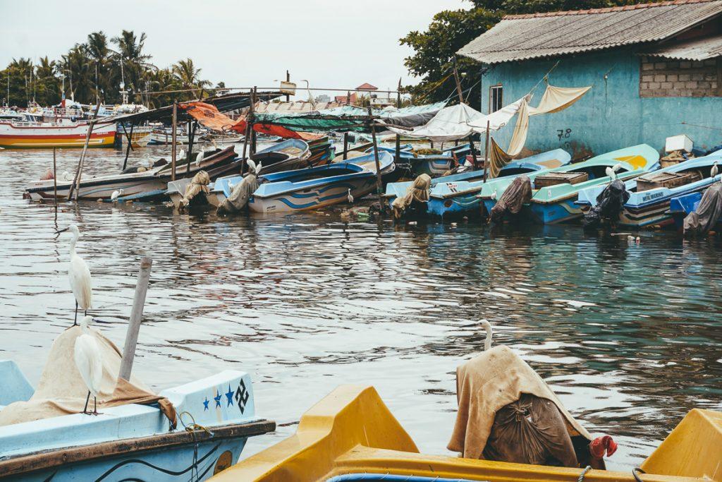 Start de reisroute Sri Lanka in Negombo