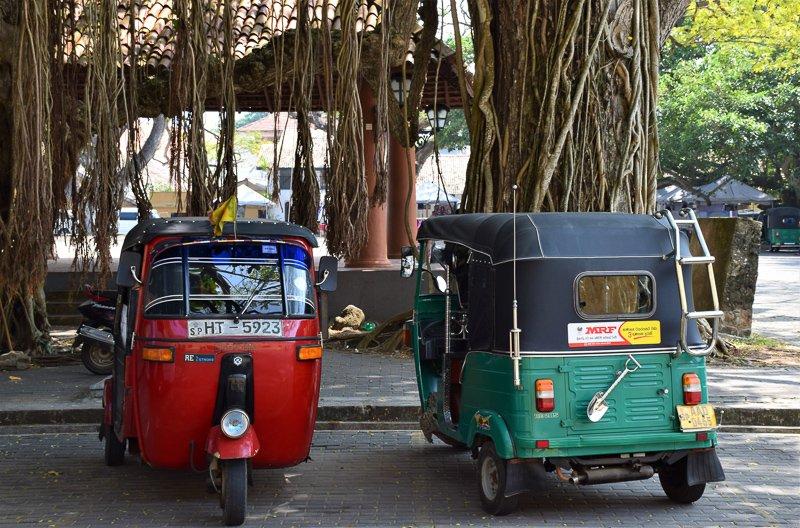 Tuktuks in Sri Lanka.