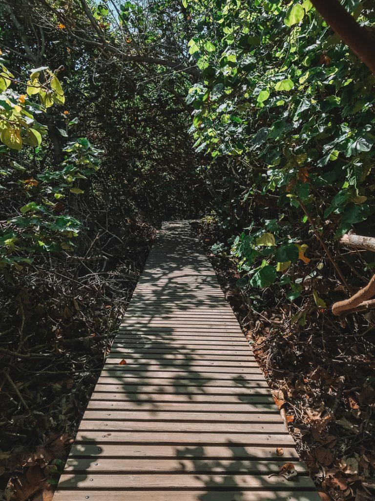 Het houten vlonderpad van El Zaino naar Arrefices