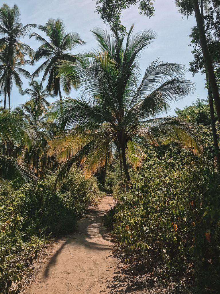 De weg van La Piscina naar Cabo San Juan.