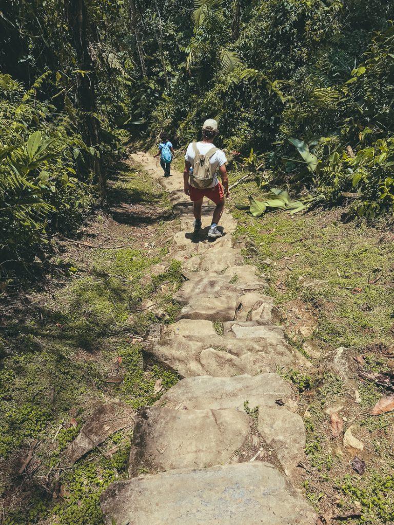 De traptreden naar de Ciudad Perdida in Colombia
