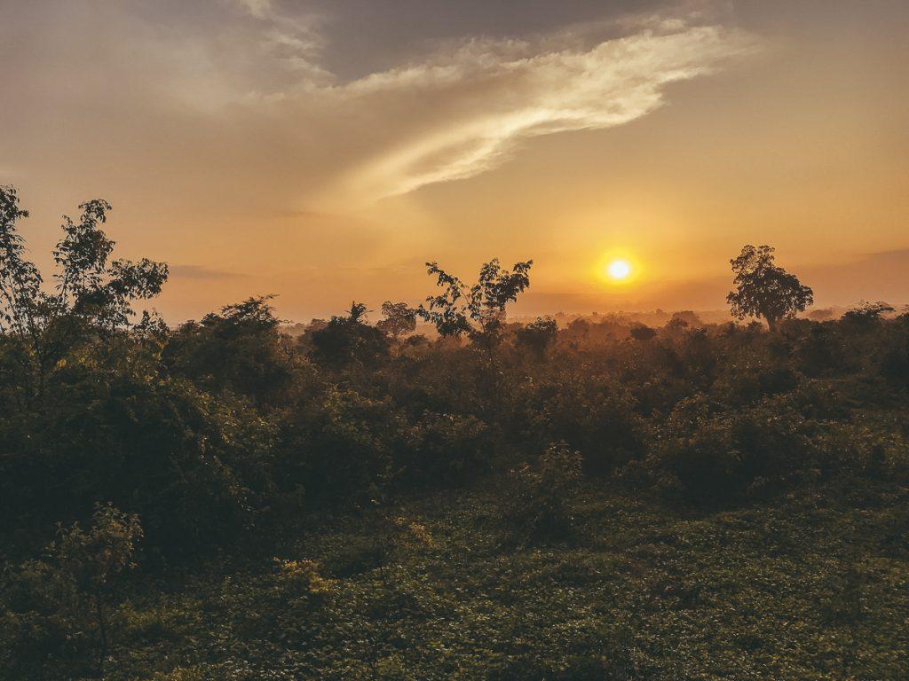 Zonsopgang in het Udawalawe National Park