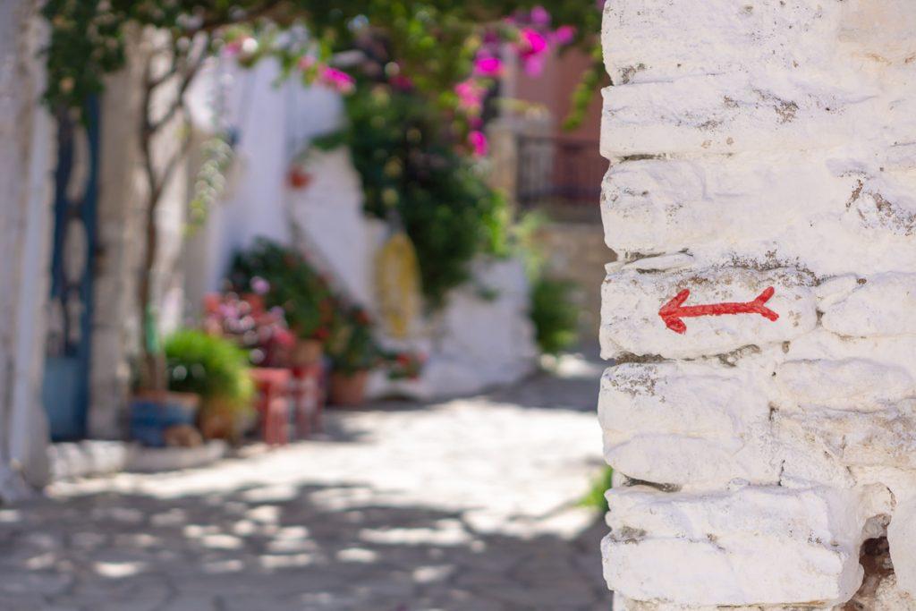 De prachtige bloemetjes van Griekenland