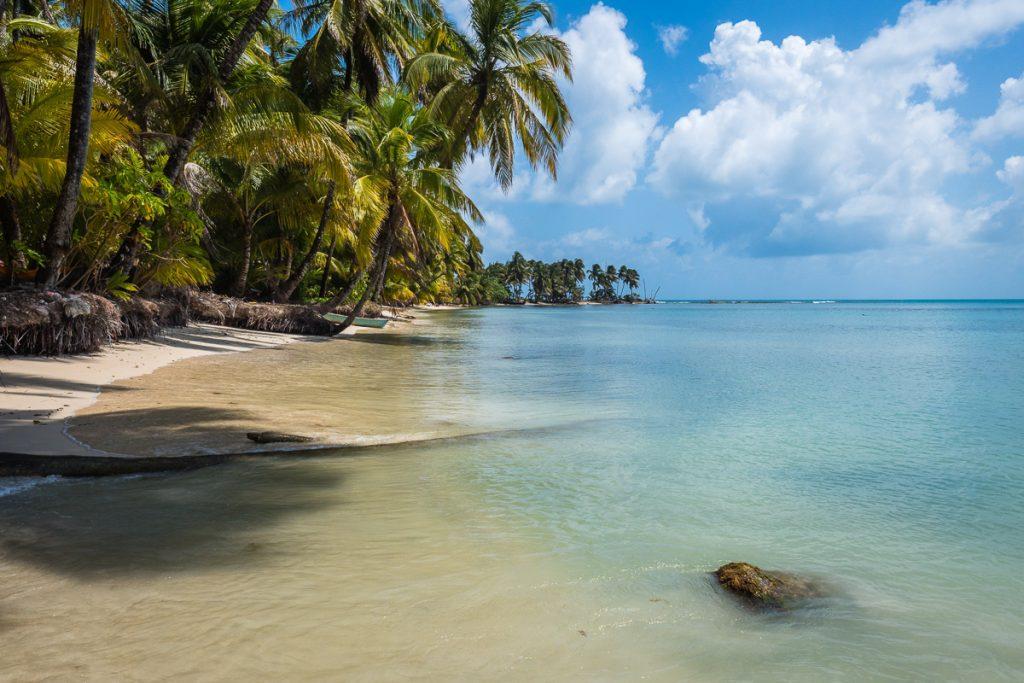 Een paradijselijk eiland met palmbomen, een blauwe zee en een wit strand
