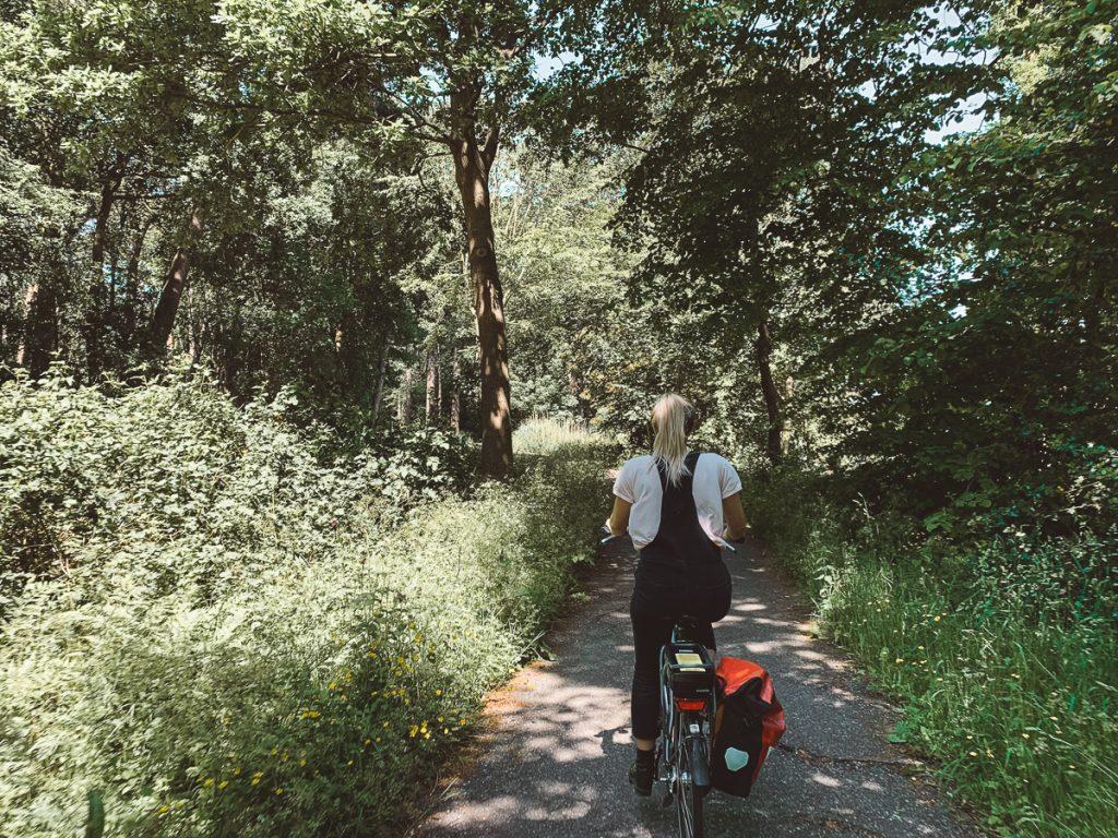Fietsen door de bossen op Texel
