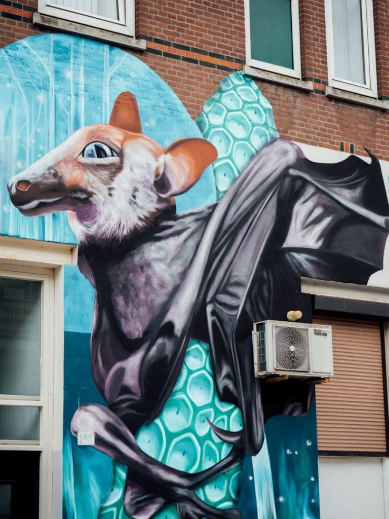 Een van de leukste Rotterdam tips: street art kijken!