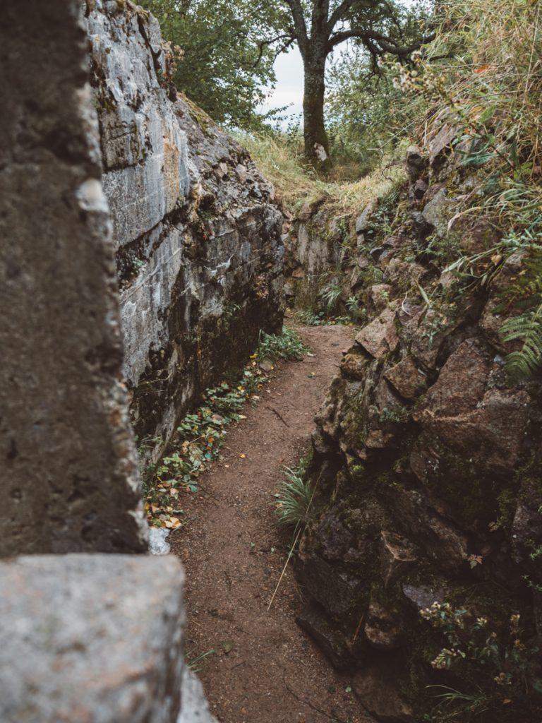 De loopgraven van Hartmannswillerkopf in de Vogezen